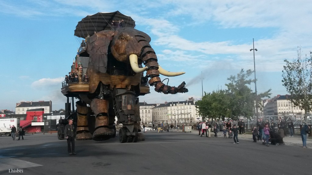 le-grand-elephant